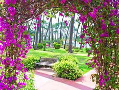 Hotel ROC Marbella Park Bild 11
