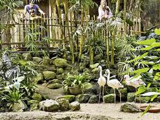 Center Parcs - Het Heijderbos Bild 12