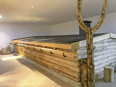Alpina Lodge Oberwiesenthal Bild 12