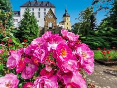 Schloss Purschenstein Bild 07