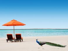 The Resort, Jebel Ali Beach Bild 10