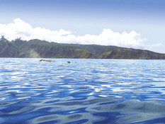 Hotel Aqua Natura Madeira Bild 12