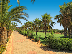 Aeolos Beach Resort Bild 09
