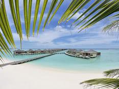 Paradise Island Resort & Spa Bild 06