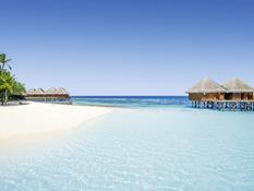 Mirihi Island Resort Bild 02